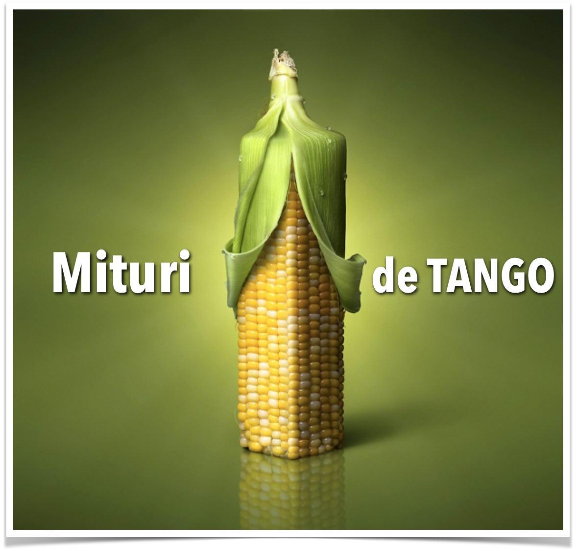 intrebari-mituri-tango-tangent