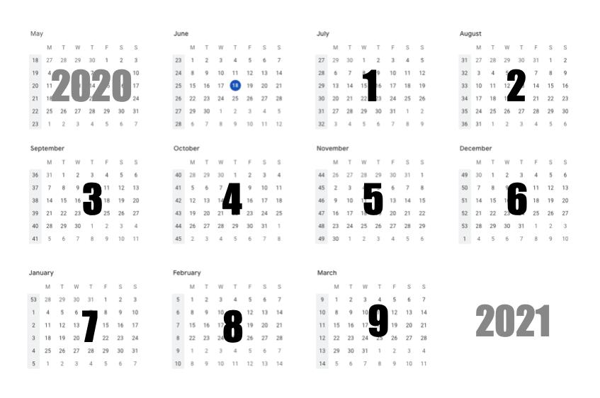 9-luni-de-online